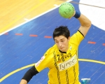Volleyball & Handball